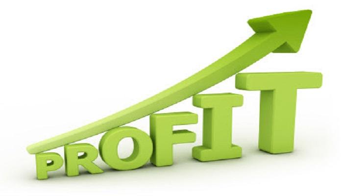 Pembuatan Website Dapat Meningkatkan Profit